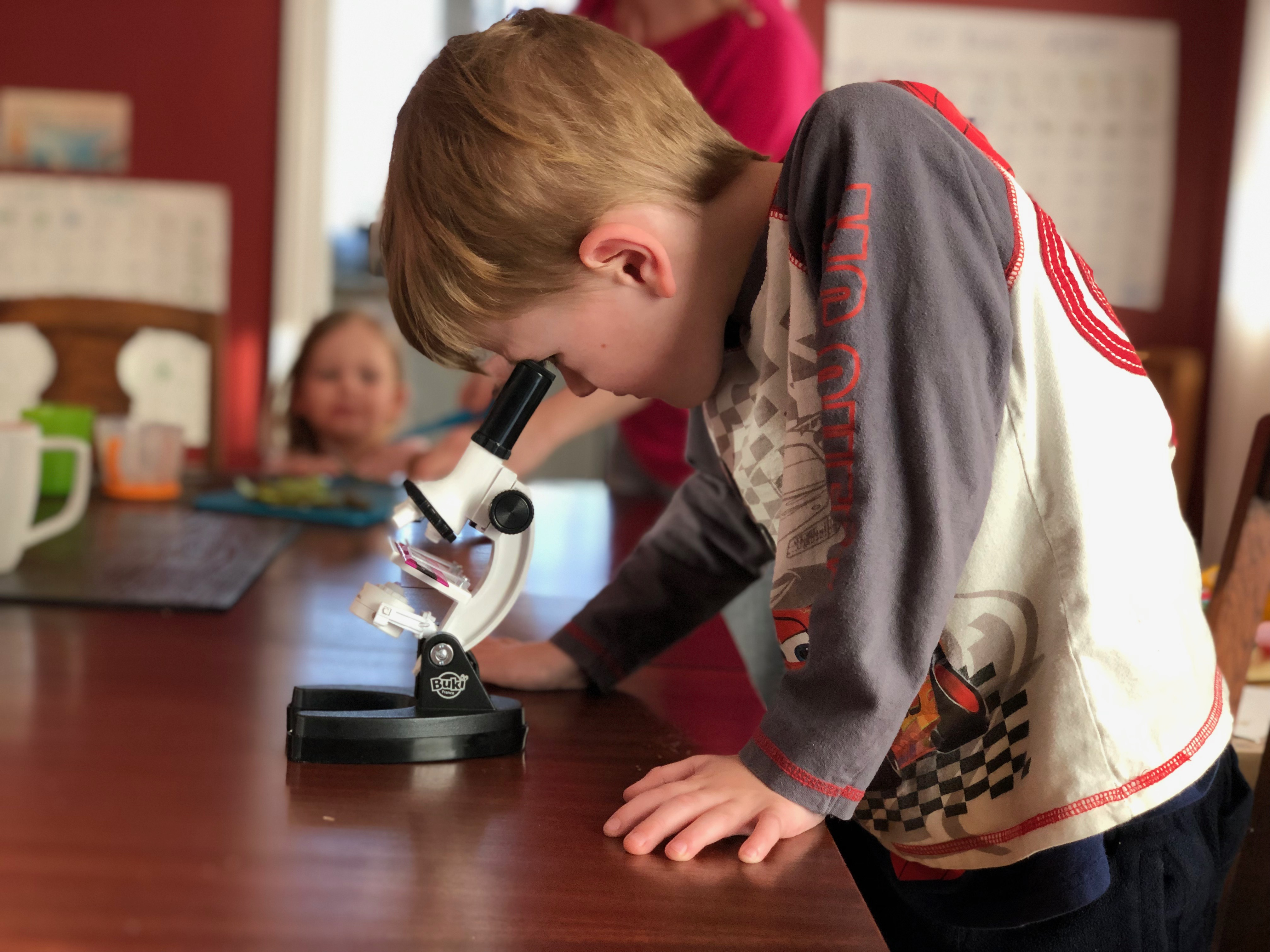 A young boy looks through a microscope
