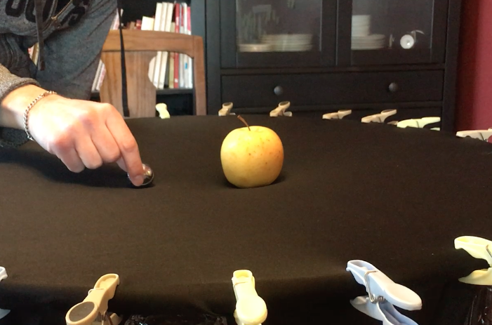 A golden delicious apple sits in the middle of a black piece of fabric stretched across a hula hoop. A hand is seen holding a small metal bocce ball a few inches away from the apple.